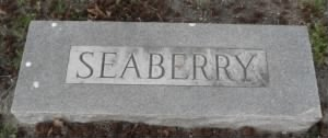 Seaberry Headstone