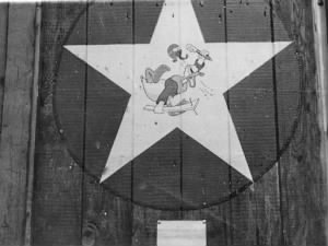 309th Fighter Squadron