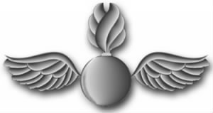 Aviation Ordnance (AO) Rating Insignia.jpg