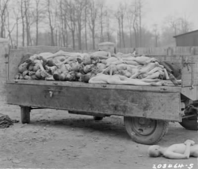bodies of prisoners of the Nazis Buchenwald concentration camp Weimar Germany 14Apr1945.jpg - Fold3.com